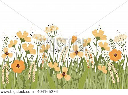 Hand Drawn Vector Illustration Blooming Summer Meadow. Flower Banner On White Background. Lot Of Dif