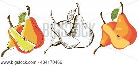 Silhouettes Of Pears. A Slice Of Pear. Pear In Sketch And Color. Abstract. Diet. Food. Fruit. Minima