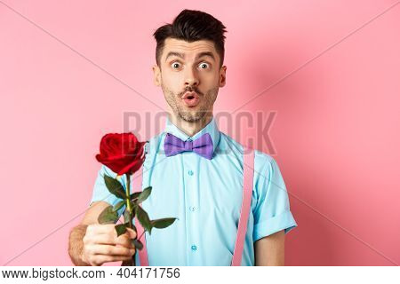 Valentines Day And Romance Concept. Cute Man In Bow-tie Giving Red Rose To You And Looking With Symp