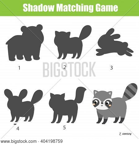 Shadow Matching Game. Kids Activity With Cartoon Raccoon. Find Silhouette Page For Toddlers