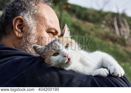Tricolor Cute Cat Meows On Mature Man's Shoulder. Friendship, Love, Love Of Animals, Affection Conce