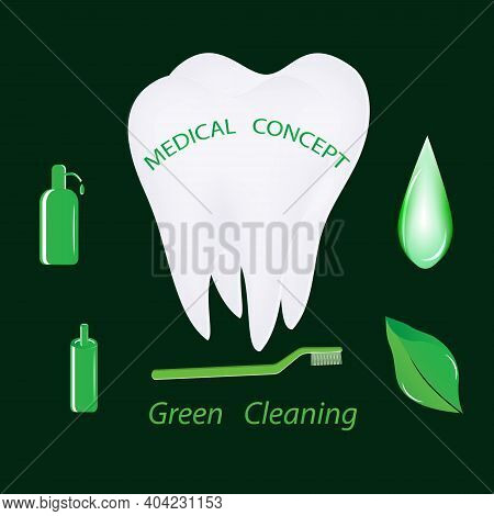 Tooth Molar, Environmentally Friendly Oral Care Products - Vector. Happy Dentist Day. International