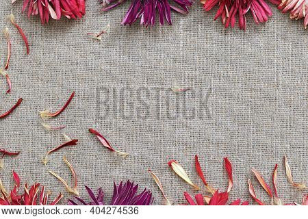 Dry Petals Frame On Textile Background. Flat Lay With Copy Space. Composition With Dry Gerbera Flowe