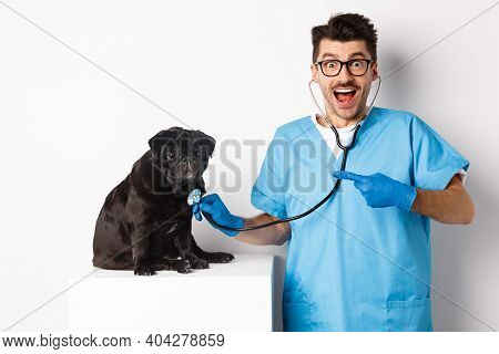 Handsome Veterinarian At Vet Clinic Examining Cute Black Pug Dog, Pointing Finger At Pet During Chec