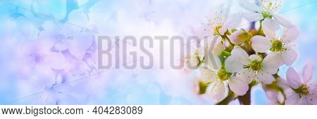 Blurred Floral Background.a Gentle Natural Background In Pastel Colors With A Soft Accent Of Pink An