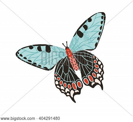 Gorgeous Butterfly With Pastel Wings And Antennae Isolated On White Background. Hand Drawn Colored B
