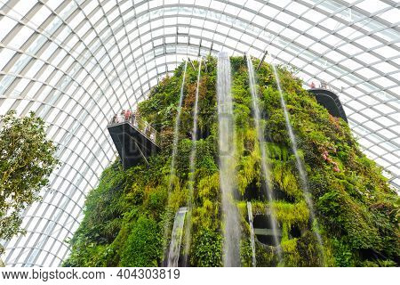 Singapore - December 19, 2019: Waterfall Inside Of The Cloud Forest Dome At Gardens By The Bay In Si
