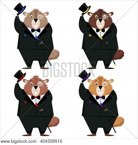 Happy Groundhog Day. A Set Of Four Elegant Marmots In A Tuxedo, Top Hat, Bow Tie, With A Cane In The