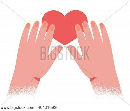 Hands Hold Red Heart Shape Isolated On White Background. Vector Illustration Concept For Valetines D