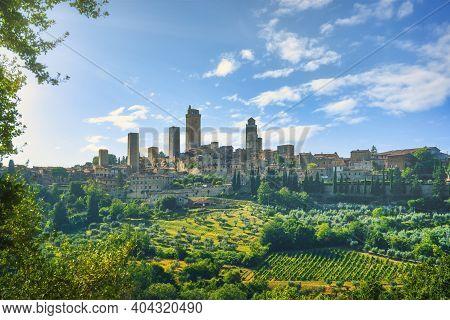 Panoramic View Of Countryside Chianti And Vernaccia Vineyards. San Gimignano. Tuscany, Italy, Europe