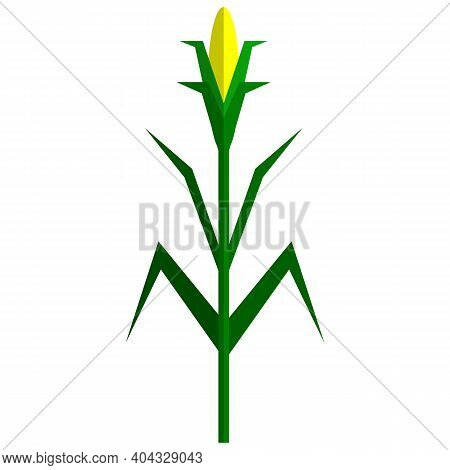 Corn Plant Icon, Flat Vector Isolated Illustration. Sweet Maize, Cereal Grain.