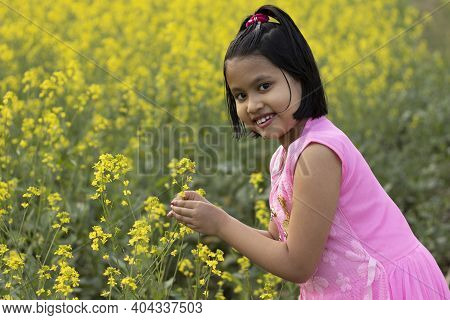 A Pretty Indian Girl Child In Pink Dress Standing With A Mustard Flower In Hand Near Yellow Mustard