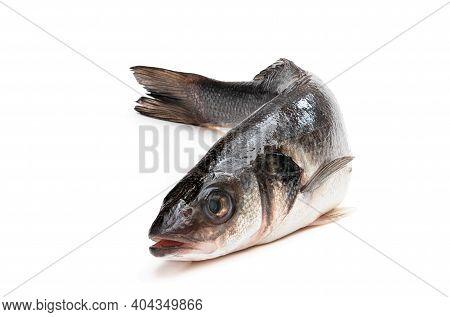 Raw Whole  Seabass Fish Isolated On White