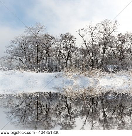 Winter landscape with frozen trees near lake water surface