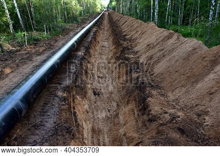 Crude Oil And Natural Gas Pipeline Construction Work In Forest Area. Installation The Petrochemical