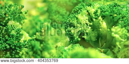 Panoramic Image Of Broccoli. Green Healthy Food Background With Vegetable Broccoli Texture. Macro. S
