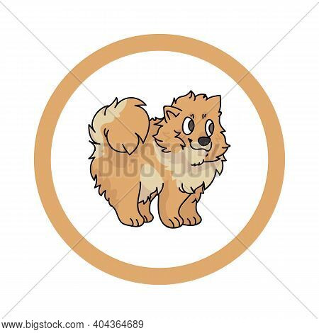 Cute Cartoon Pomeranian In Circle Puppy Vector Clipart. Pedigree Kennel Doggie Breed For Kennel Club