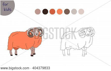 Coloring Book For Kids Farm Animal, Ram, Coloring Book By Colors