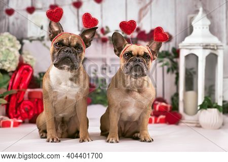 French Bulldog Dogs With Valentine's Day Headbands With Hearts Sitting In Front Of Seasonal Decorati