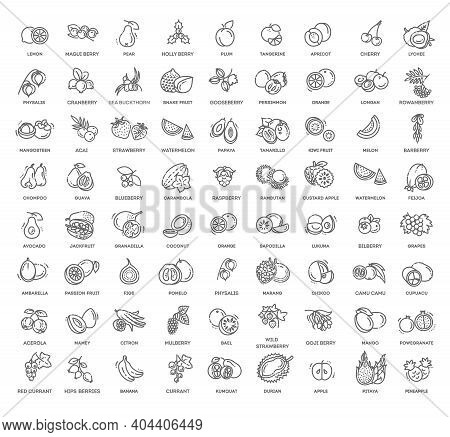 Fruits And Berries Vector Icons. Fresh And Natural Ingredients