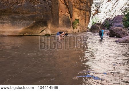 Hikers Crossing River At The Zion Narrows, Narrow Of The Virgin River, Steep Faces Of Zion Canyon, Z