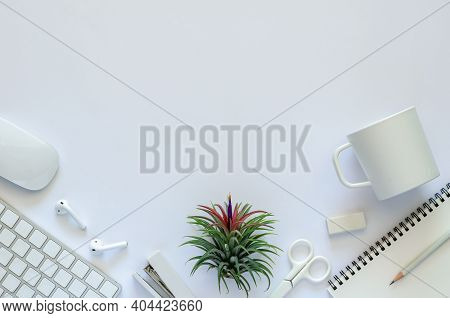 Background Of Work Space Concept With Air Plant Tillandsia And Office Stationery On White Background