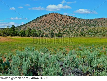 Desert Spring - A May Setting In The High Desert By Haystack Reservoir In The Crooked River National