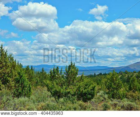Juniper Clouds - A Sunny Spring Day In The High Desert - Ochoco Mountains In The Distance - Crooked