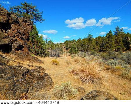 August Heat - A Rock And Juniper Desert Scene In Deep Canyon - West Of Redmond, Or