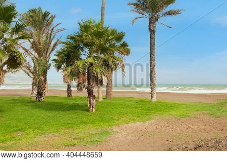 Shot Of Beautiful Landscape With Blue Sky, Sea And Palm Trees