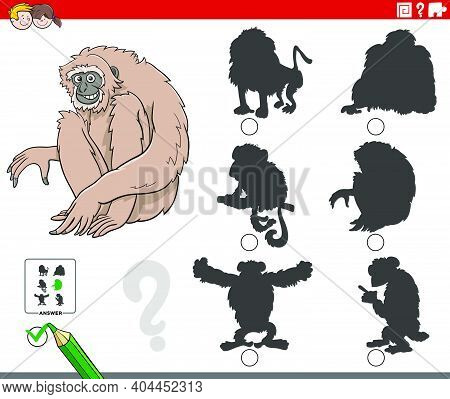 Cartoon Illustration Of Finding The Right Shadow To The Picture Educational Game For Children With G