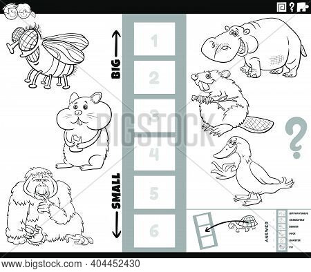 Black And White Cartoon Illustration Of Educational Task Of Finding The Biggest And The Smallest Ani