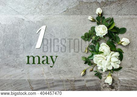 May 1st . Day 1 Of Month, Calendar Date. Stylish Roses Flat Lay. White Roses Border On Pastel Grey B
