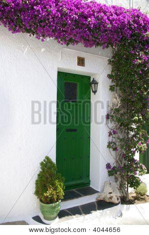 Green Door With Bougainville