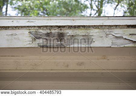 Paint Peeling Off A White Roof Fascia Board