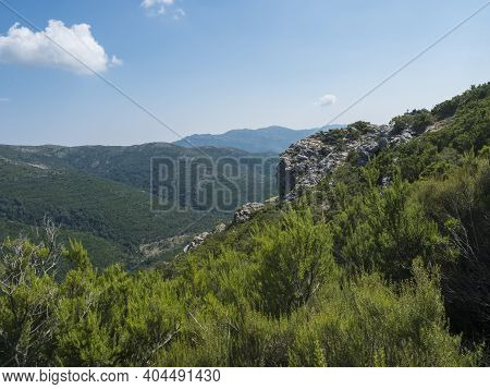Overview Of The National Park Of Barbagia With Limestone Rocks And Green Forest Hill, Mountain. Cent