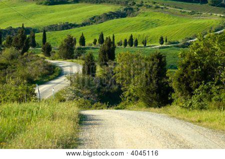 Gravel Road, Italian Countryside