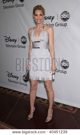 LOS ANGELES - JAN 10:  LESLIE BIBB ABC All Star Winter TCA Party 2012  on January 10, 2012 in Pasadena, CA