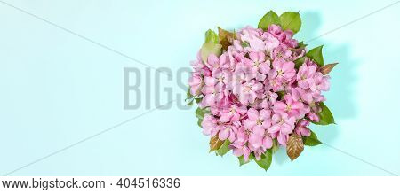 Banner With Bouquet Of Blooming Pink Apple Tree Or Sacura Twigs On Light Blue. Holiday Valentines Da