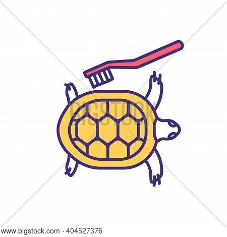 Pet Turtle Home Treatment Rgb Color Icon. Professional Salon Grooming For Hygiene. Tortoise Washing