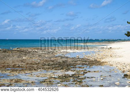 The Rocky Landscape Of Famous Seven Mile Beach On Grand Cayman Island (cayman Islands).