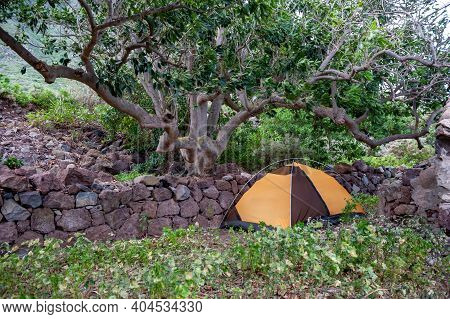Yellow And Black Tent Camping Backpacking In Tenerife. Hiking From Taganana Along The Trail Through