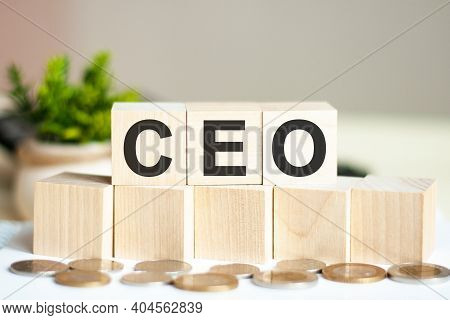 Concept Word Ceo On Wooden Blocks On Beautiful Background From Green Flower. The Word Ceo On Wood Cu