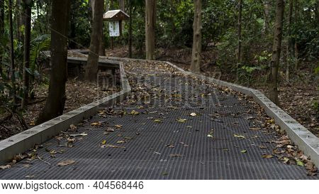 Blurred Foreground And Background Of Walking Track Amongst Bushland With Tourist Information Box In