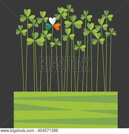 St. Patrick's Day Design With Tall Shamrocks. One Shamrock With Flag Colors Of Ireland. Space For Te