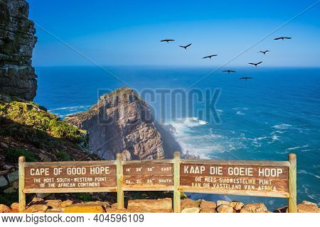 Cape of Good Hope at the southern tip of the Cape Peninsula, South Africa. White foam of the ocean surf. Bright sunny summer February day. Flock of migratory birds over the raging surf.