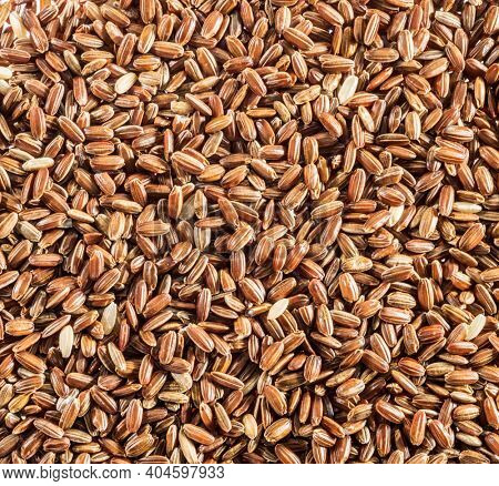 Brown rice - whole grain rice with outer hull or husk. Close-up.