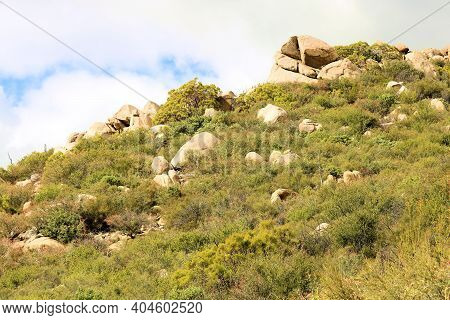 Rural Hillside Covered With Chaparral Plants And Large Rocks Taken At The Mojave Desert In The South