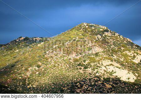Chaparral Plants Surrounding Large Rocks And Boulders On An Arid Hillside Taken On The High Desert P