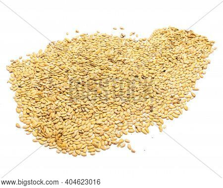 Winter Melon Wax Gourd Seeds Spreading With Copy Space On Isolated White Background